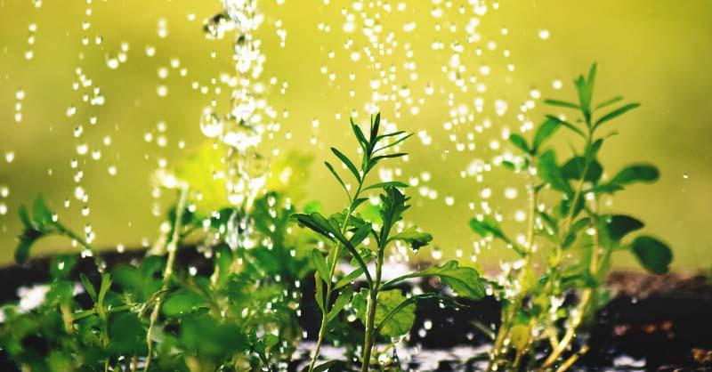 idratazione e biorivitalizzazione